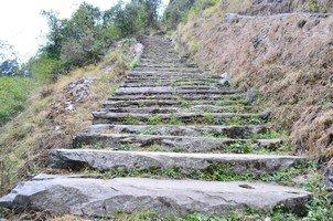 Лестница вверх.  Базовый лагерь Аннапурны + сафари Читвана. Непал, Hikeup