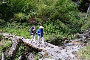 Через ручей.  Базовый лагерь Аннапурны + сафари Читвана. Непал, Hikeup