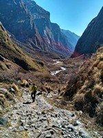 По дороге к Деурали.  Світанок біля підніжжя Аннапурни. Непал, Hikeup