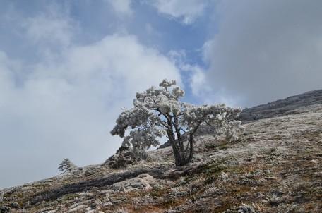 Зима на Чатыр-Даге.  Пещеры Чатыр-Дага, Hikeup