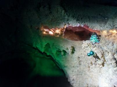 Пещерная ёлка.  Пещеры Чатыр-Дага, Hikeup