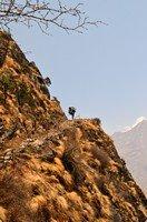 На высоте.  Чарующий и таинственный Непал. Далеко и ещё дальше., Hikeup