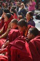 Послушники буддистского монастыря .  Тибетский Новый год и Марди Химал трек, Hikeup