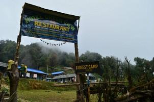 Forest Camp.  Марди Химал трек и рафтинг по Белой воде, Hikeup