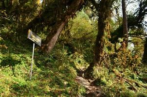 По дороге в Лоу Кемп.  Марді Хімал трек та рафтинг по Білій воді. Непал, Hikeup