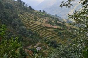 Террасы.  Марді Хімал трек та рафтинг по Білій воді. Непал, Hikeup