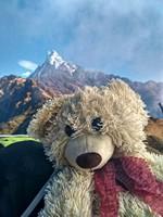 Медведь Федя тоже любит селфи на фоне священной Мачапуччаре.  Марди Химал трек и рафтинг по Белой воде, Hikeup
