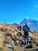 Вверх к Мачапуччаре.  Марді Хімал трек та рафтинг по Білій воді. Непал, Hikeup