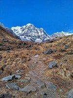 Красотка Аннапурна Южная.  От Марди до Аннапурны. Непал, Hikeup