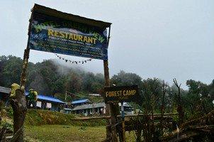 Forest Camp.  От Марди до Аннапурны. Непал, Hikeup