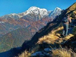 Поднимаемся по хребту с видами на снежные пики Аннапурни и Хуинчули.  От Марди до Аннапурны. Непал, Hikeup