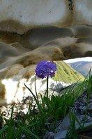 Внутри снежника.  Сванский хребет и другие приключения. Грузия. Сванетия, Hikeup