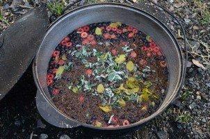 Ягодный чай.  Поход по грузинскому Кавказу. Верхняя Сванетия, Hikeup