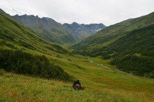 Вид на долину.  Поход по грузинскому Кавказу. Верхняя Сванетия, Hikeup