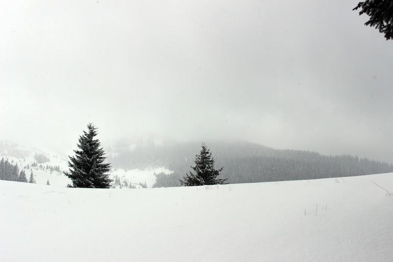 Карпаты. Зима