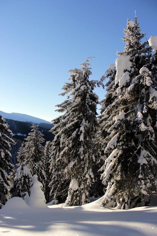 Поход по зимним Карпатам
