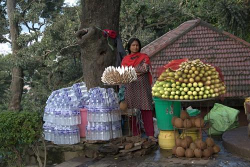 sightseeing tour of kathmandu 23