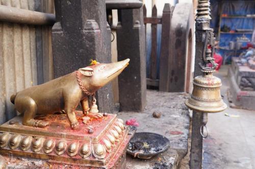 sightseeing tour of kathmandu 36