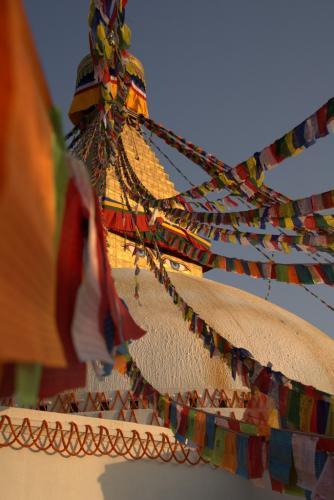 sightseeing tour of kathmandu 6