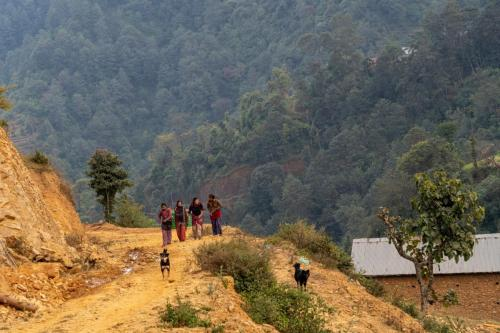 В гости к Тамангам. Однодневное путешествие по холмам Катманду